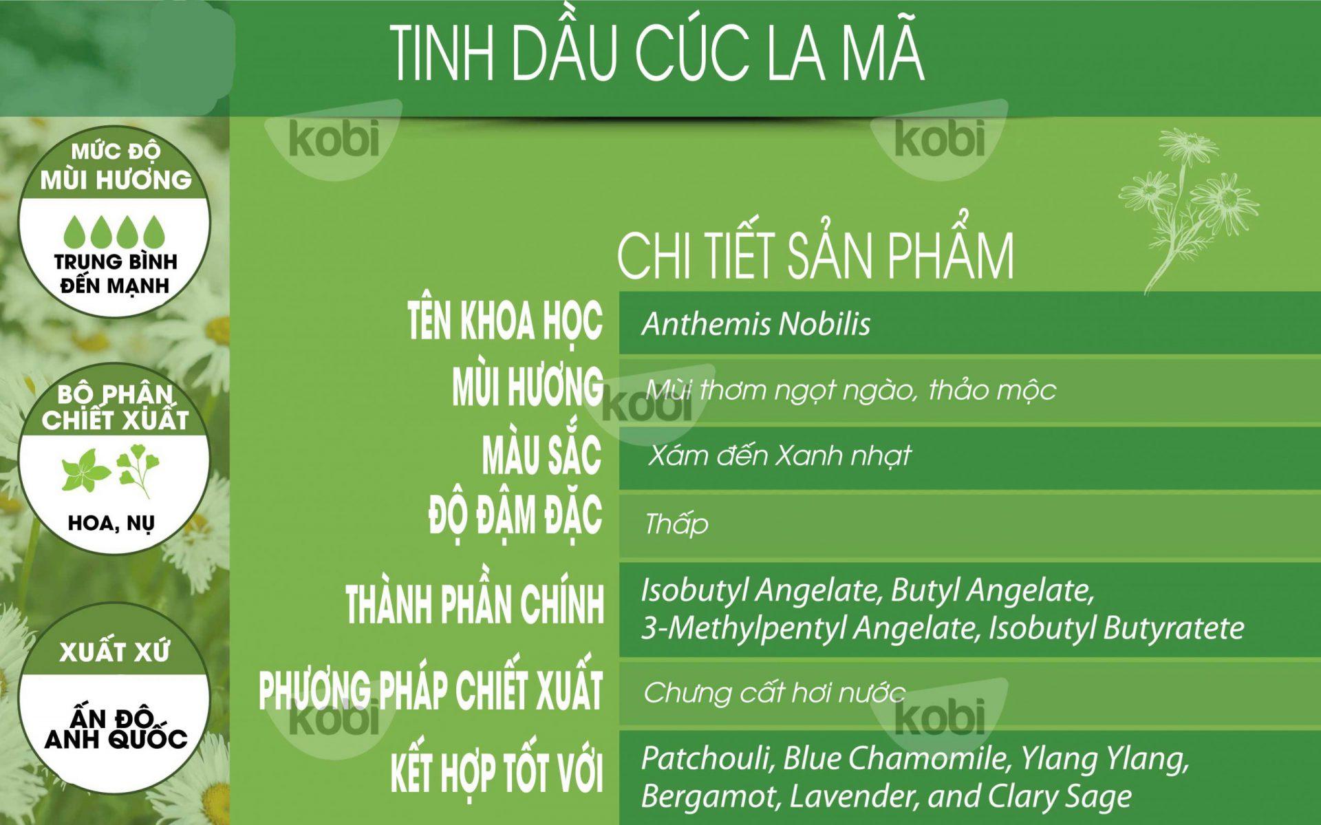 Tinh dầu cúc la mã kobi (roman chamomile essential oil)